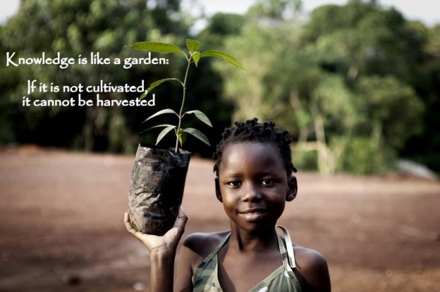 knowledge is like a garden.  If it is not cultivated it can not be harvested   proverb